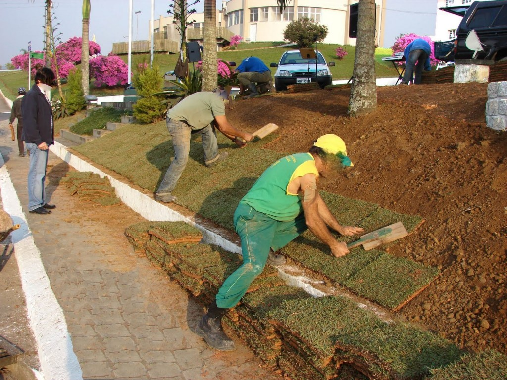 jardinagem_prefeitura (2)